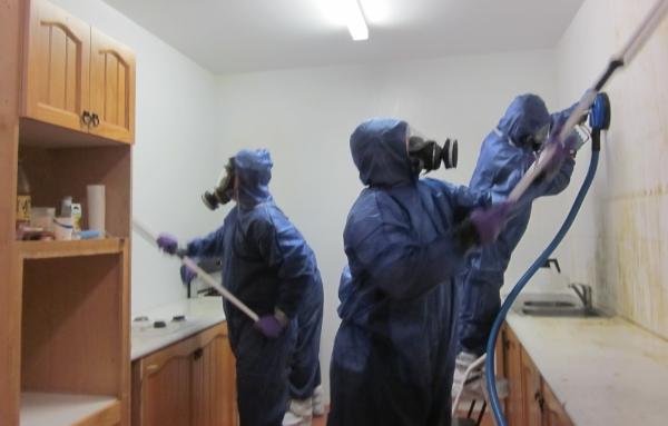 Desinfección de viviendas en limpiezas post mortem