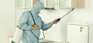 Experto en control de plagas realizando una fumigación en una vivienda