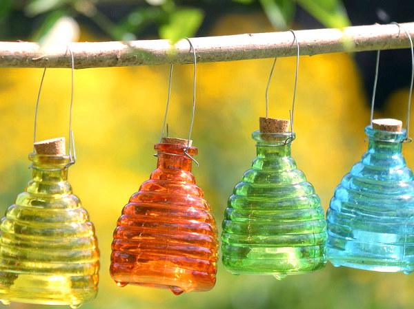 Utilización de aceites esenciales contra las avispas